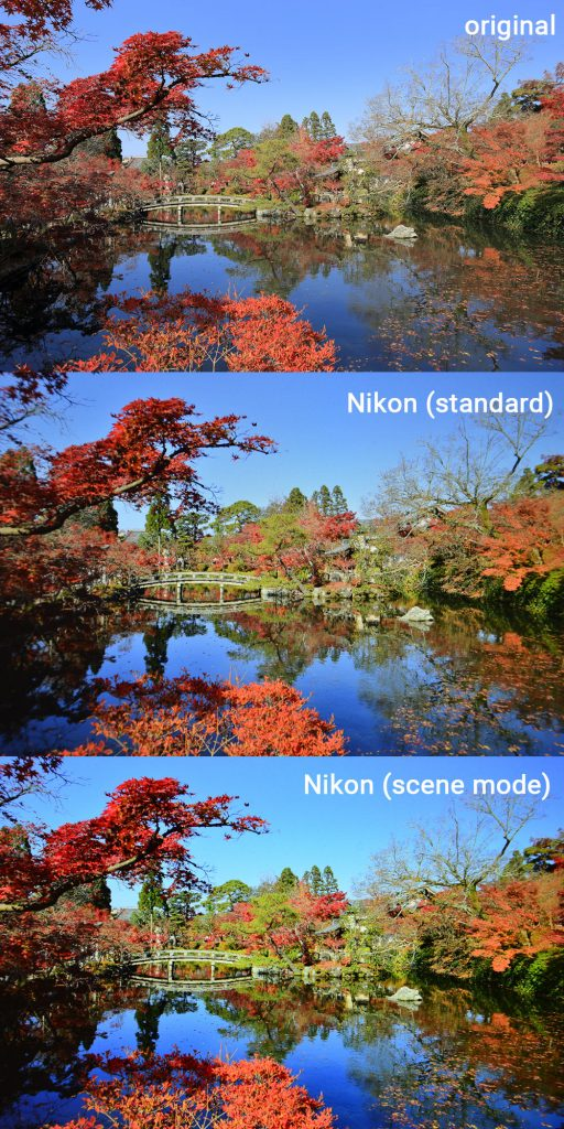 Nikon Autumn Colors Scene mode