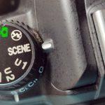 Nikon D7000 scene mode